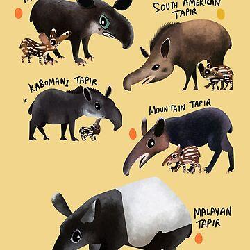 Tapirs of the World by rohanchak