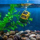 Bubblecar by Alan Organ LRPS