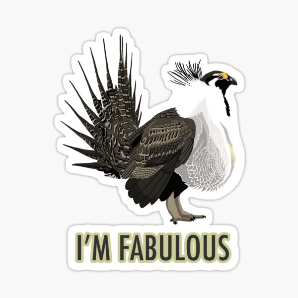 Fabulous Greater Sage-Grouse Sticker