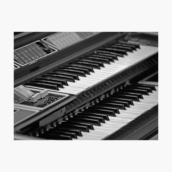 Vital Organ Photographic Print
