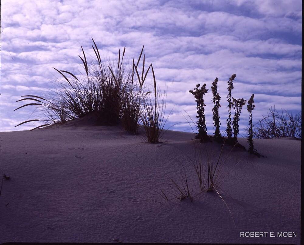 Dune 1 by ROBERT E. MOEN