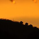 High on the Mountain at sunset. by kat  -