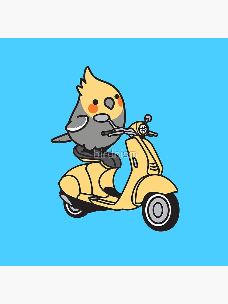 Scooter Chubby Cockatiel by birdhism