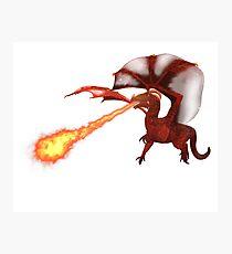 dragon02 Photographic Print