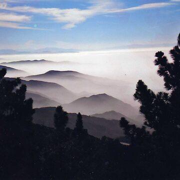 Morning Mist by dianeserven