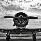 Warbird BW by Gypsykiss