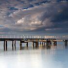 Twilight at Davies Bay by Vickie Burt
