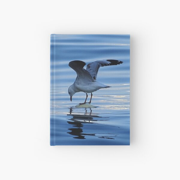 Seagull  Hardcover Journal