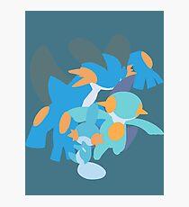 Mudkip Evolution Photographic Print