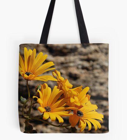 Arctotis cuprea – ASTERACEAE – Gousblom Tote Bag
