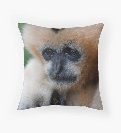 White Cheeked Gibbon Throw Pillow