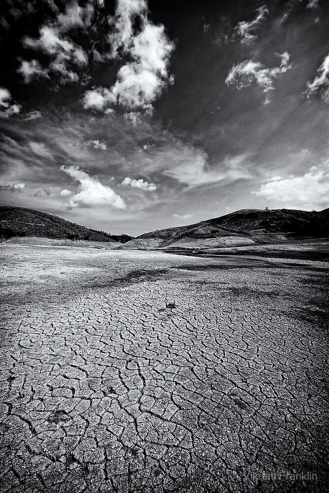 Parched In B&W by Vikram Franklin