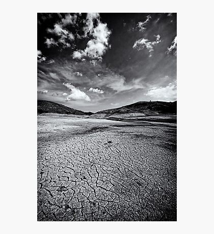 Parched In B&W Photographic Print