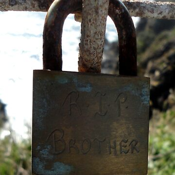 Love Locks -RIP Brother, Forster 20161025 by muz2142