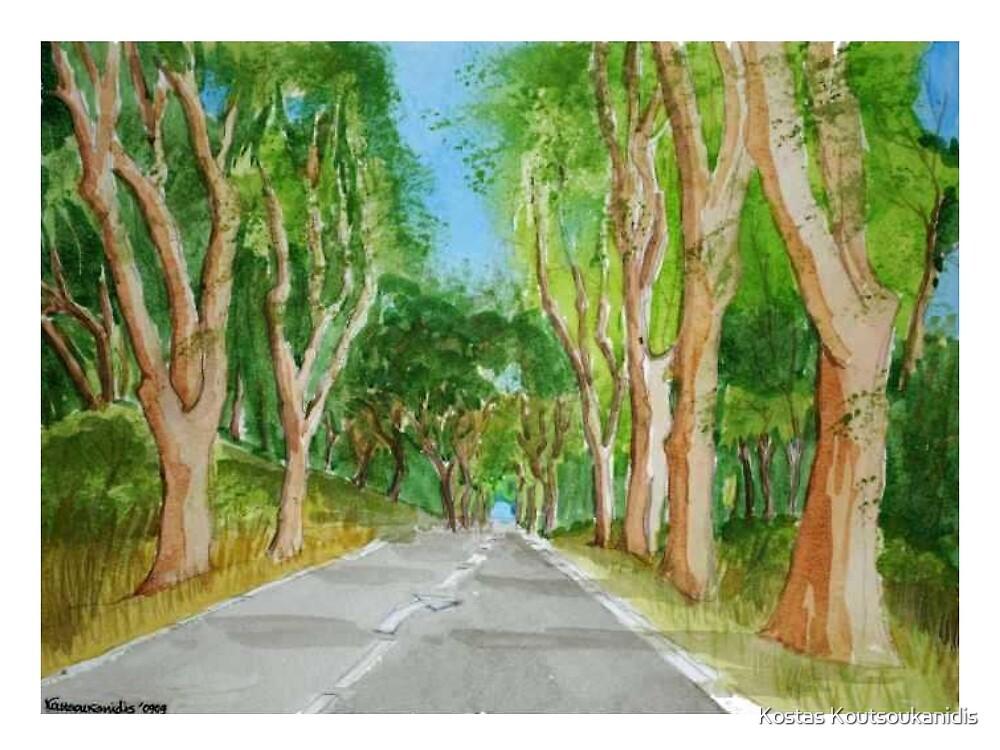 Tree Passage by Kostas Koutsoukanidis