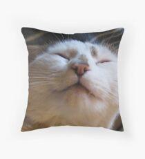 Audreys Lad Throw Pillow
