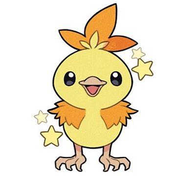 Pokémon   Shiny Hoenn Starters by ShinyBunnie