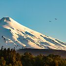 Villarrica, Pucon by Alan Robert Cooke
