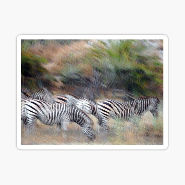 Dazzle of Zebra Sticker