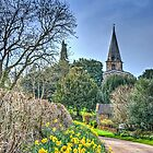 Swerford In Spring by Viv Thompson