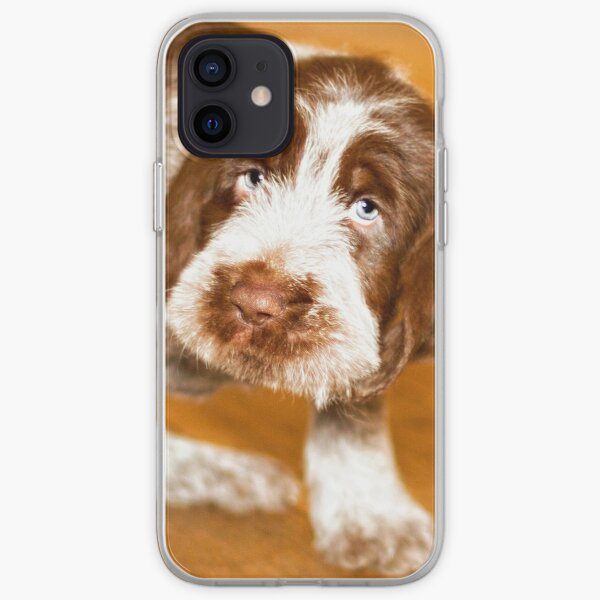 Puppy dog eyes Spinone iPhone Soft Case