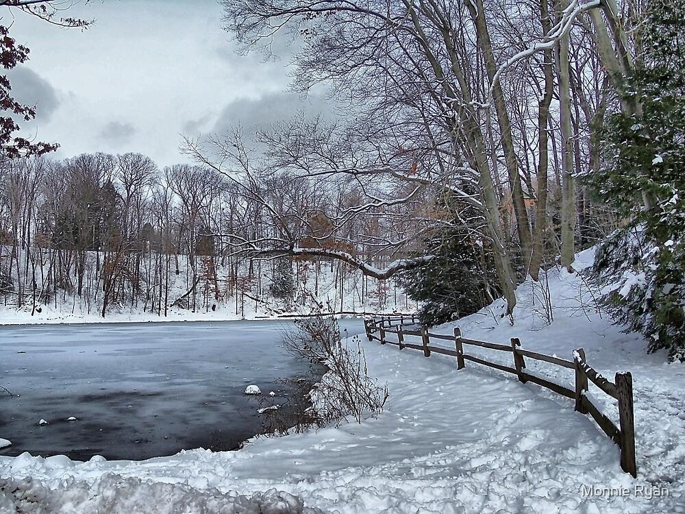 Pondering Winter by Monnie Ryan