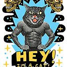 Hey! I'm a cat! by jackteagle