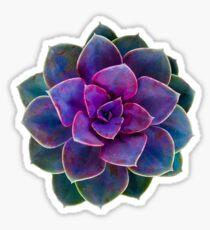 Succulent Cactus  Sticker