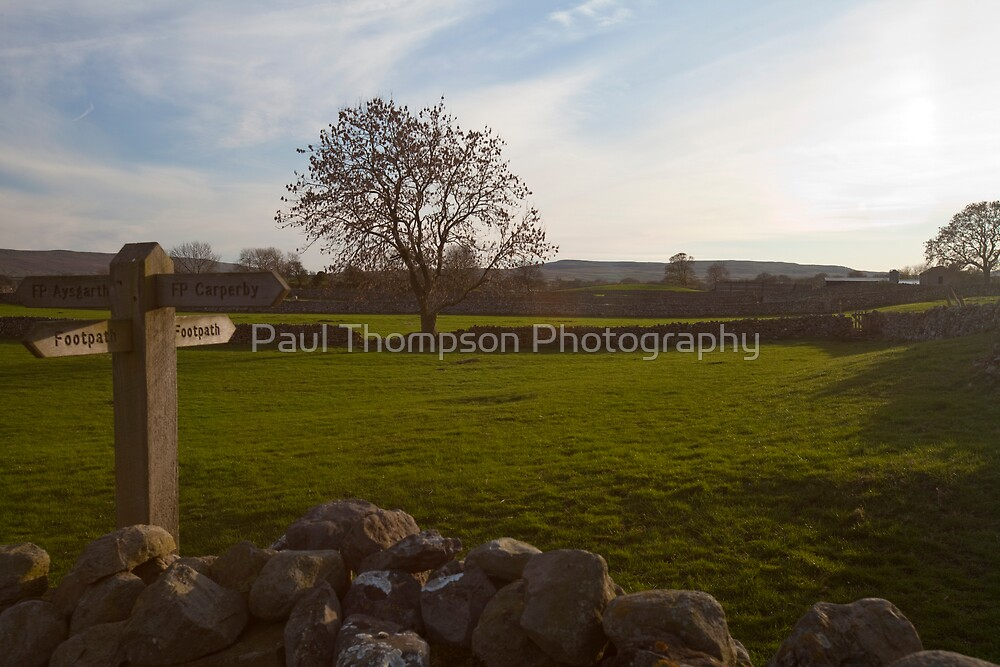 Which Way 2 by Paul Thompson Photography