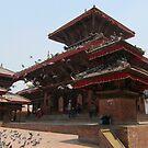 Kathmandu Temple Pigeons by John Dalkin