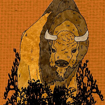 bison by Sancreoto
