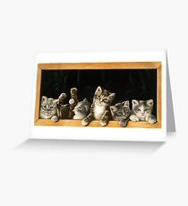 Cats in the frame Greeting Card