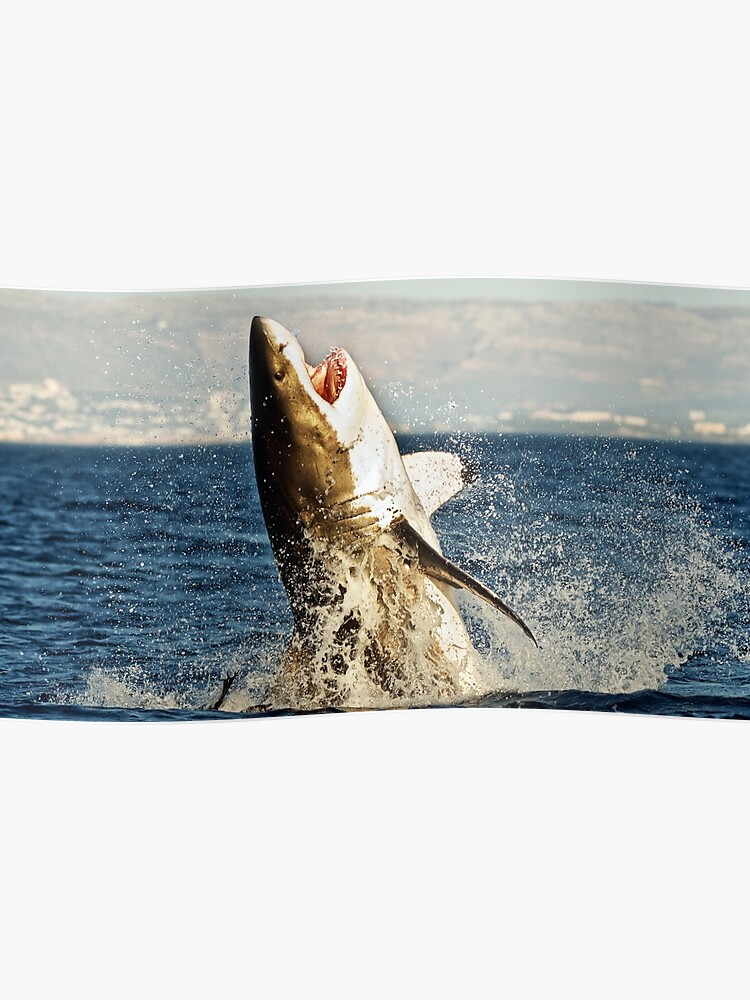 Realistic Great White Shark Jumping Out Of The Ocean | Poster
