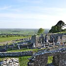 The Slane Abbey Ruins by Finbarr Reilly