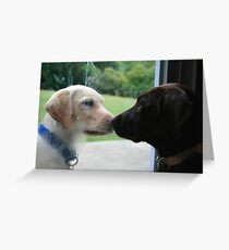 COME OUT AND PLAY WITH ME Greeting Card