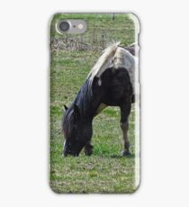 Pacified Pony iPhone Case/Skin