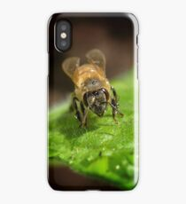 Bee (Apis mellifera) iPhone Case/Skin