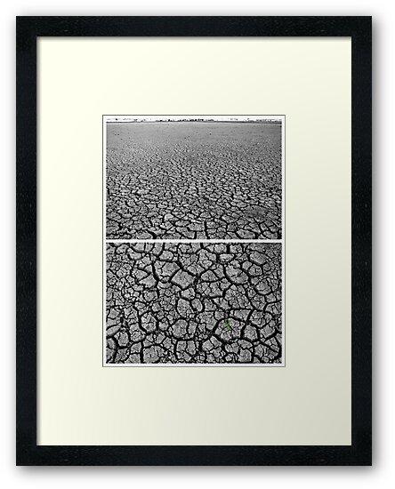 Dangars Lagoon, Uralla, New South Wales, Australia - Diptych by Kitsmumma
