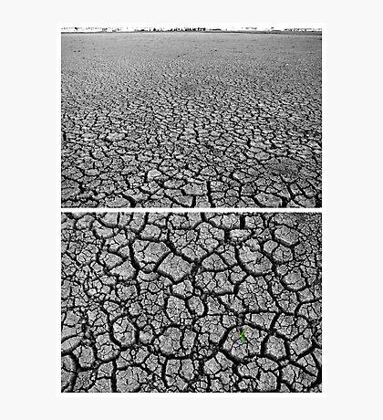 Dangars Lagoon, Uralla, New South Wales, Australia - Diptych Photographic Print