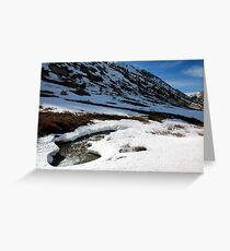 Curve Appeal Greeting Card