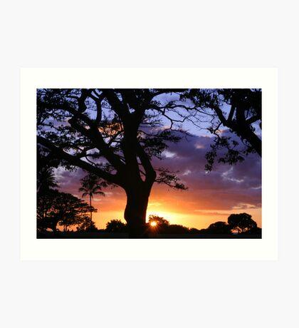 Tree over Sun Art Print