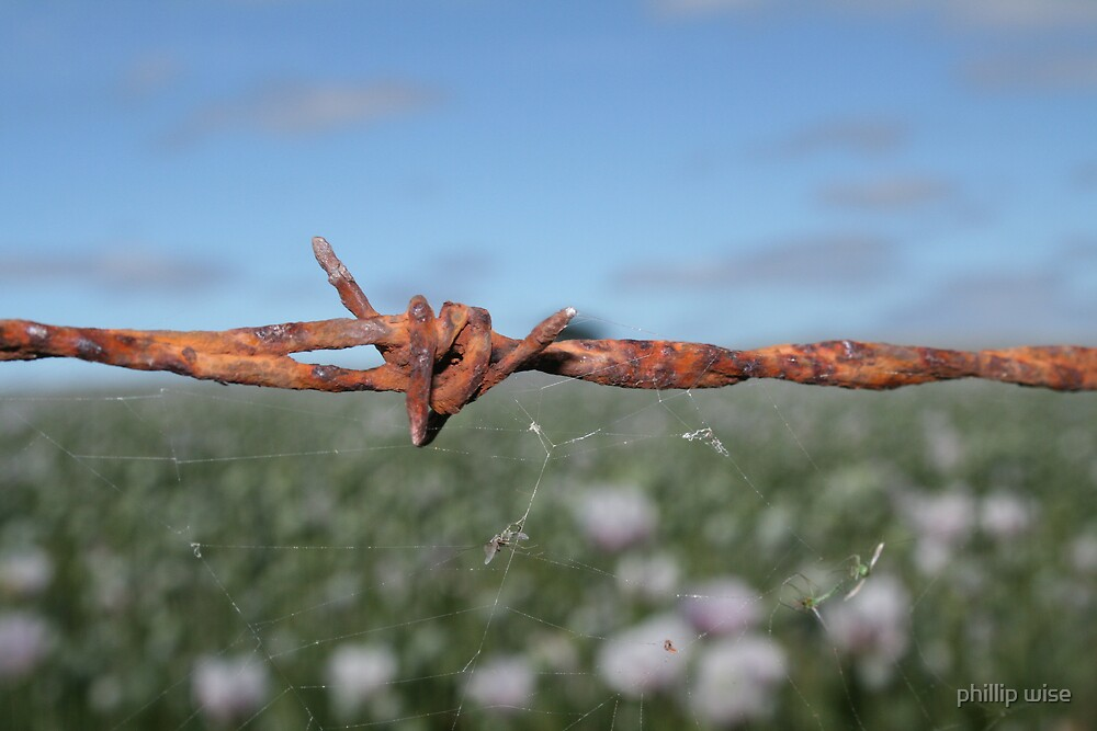 ......barbed by phillip wise