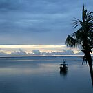 Fijian Sunset by Tracy King