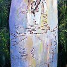 Fraser Island Scribbly Gum by Virginia McGowan