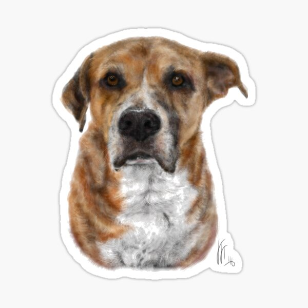 Looking Suave Handsome Pup  Sticker