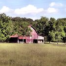 """""""'My Home away from Home',said the Farmer""""... prints and products by © Bob Hall"""