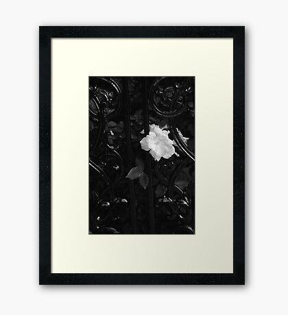 Étude en noir Framed Print