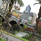 Plants  by the Yarra by Xavier Russo