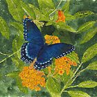 Blue Butterfly Watercolor and Ink Batik by Conni Schaftenaar