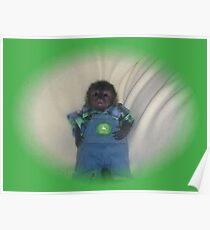 small monkey john deere Poster